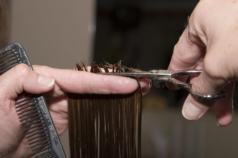 Cutting hair stock image