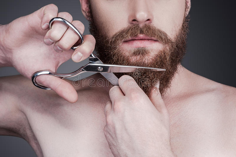 Cutting his perfect beard. stock images