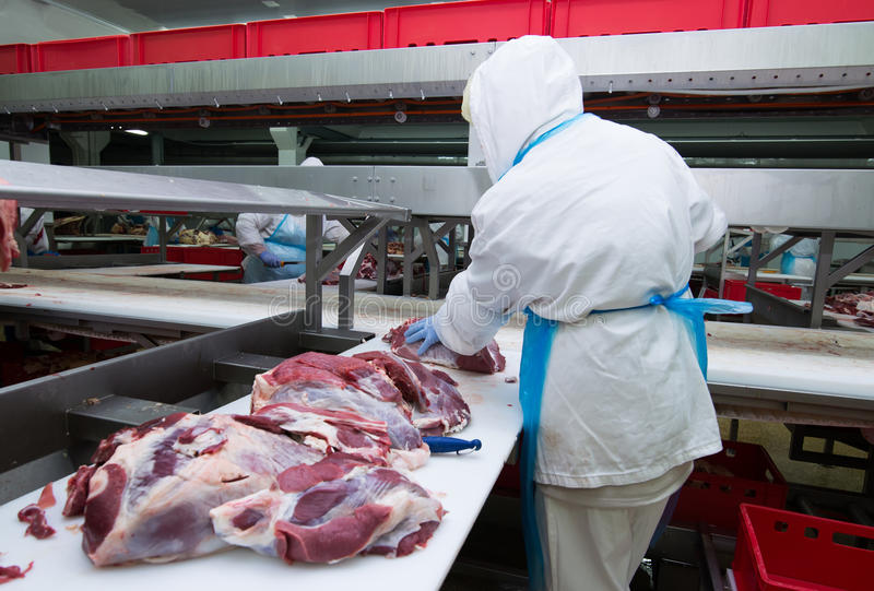 Cutting meat slaughterhouse workers in a meat factory. stock photo