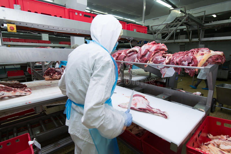 Cutting meat slaughterhouse workers in a meat factory. royalty free stock photos