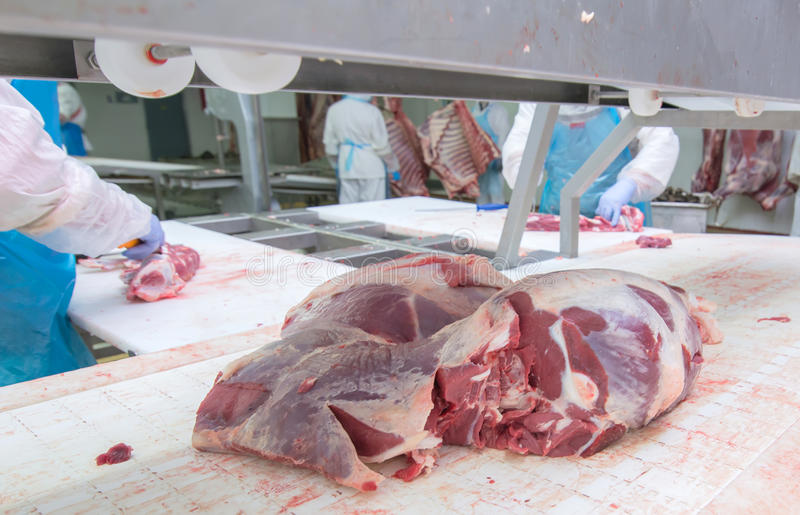 Cutting meat slaughterhouse workers in a meat factory. royalty free stock images