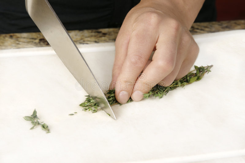 Cutting Thyme stock photography