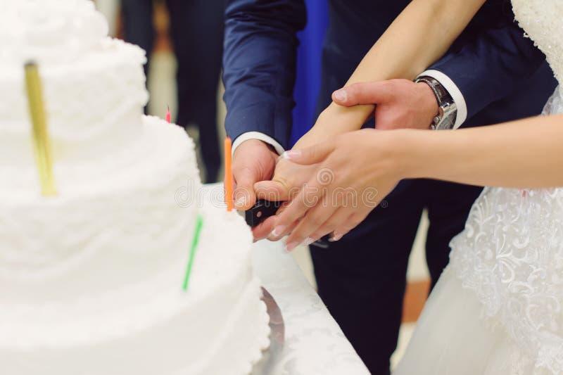 Cutting Wedding Cake royalty free stock image