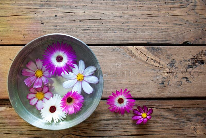 Cuvette argentée avec les fleurs de Cosmea et l'espace de copie photographie stock libre de droits