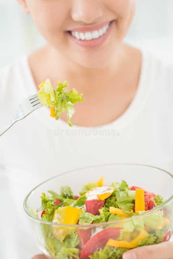 Cuvette avec de la salade image stock