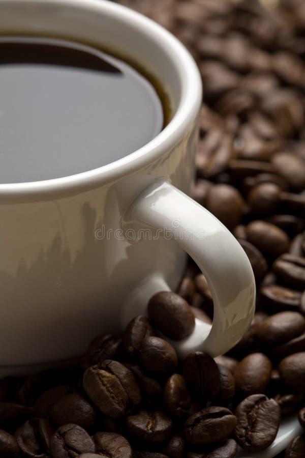 Tasse blanche de café et de grains de café images libres de droits