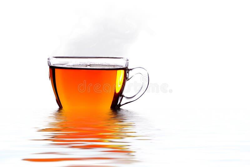 Cuvette chaude de silhouette de thé photographie stock libre de droits