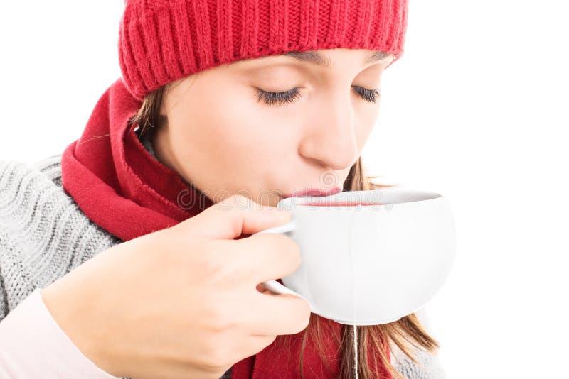 Cuvette chaude de thé photos libres de droits