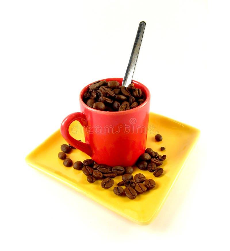 Cuvette d'haricots de coffe photo libre de droits