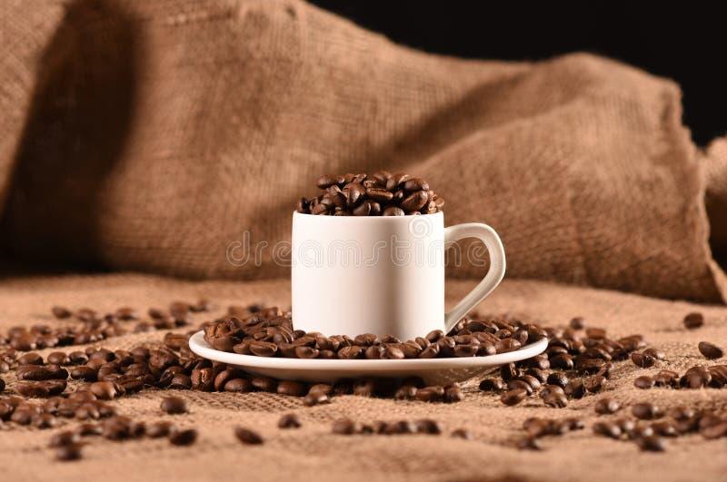 Cuvette de café blanc avec des graines de café image stock