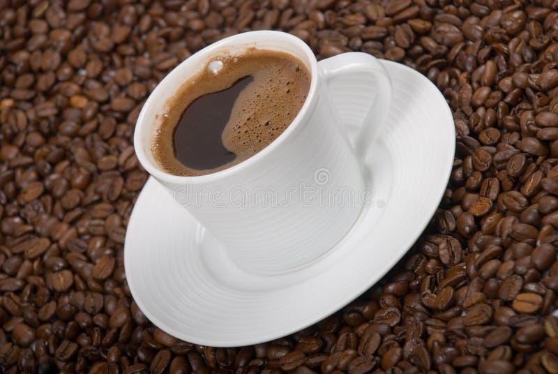 Cuvette de Coffe photo libre de droits