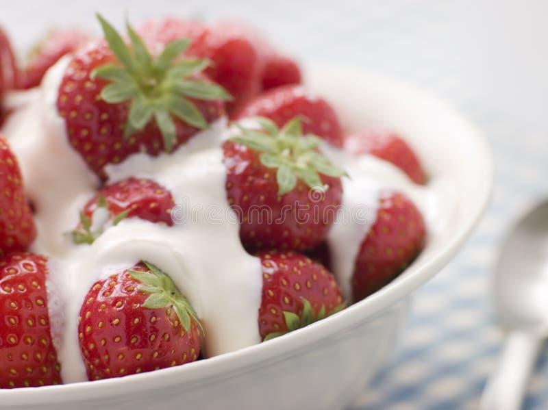 Cuvette de fraises et de crème photo stock