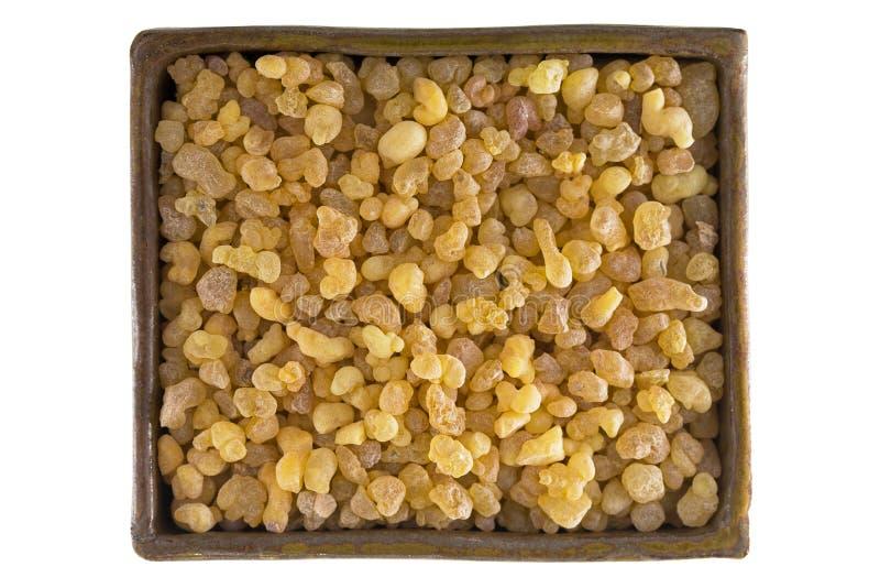 Cuvette de gomme jaune aromatique de résine de tre soudanais d'encens images stock