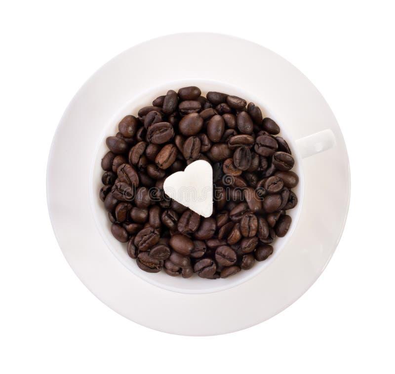 Cuvette de graines de café photos stock