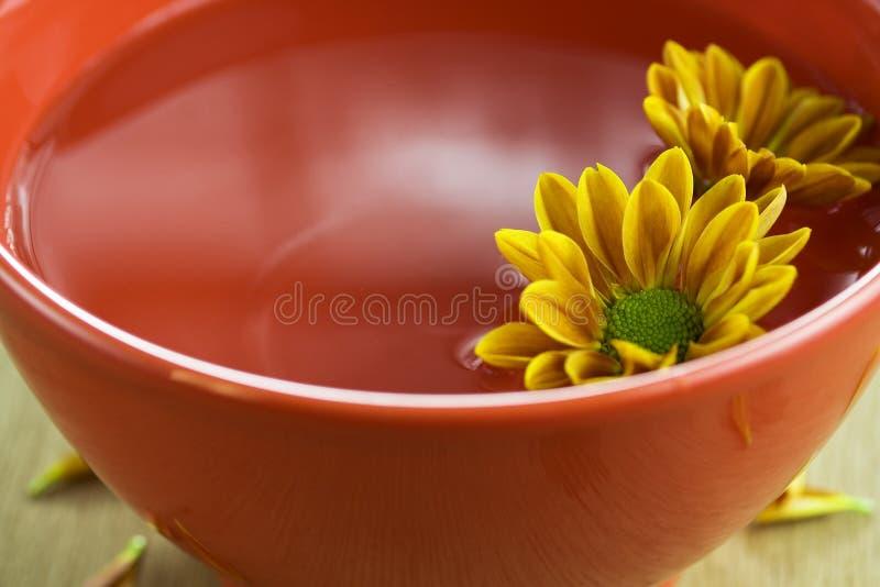 Cuvette de l'eau et de fleurs photos stock