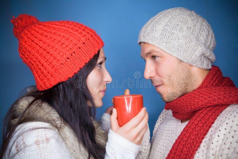 Cuvette de l'hiver image libre de droits