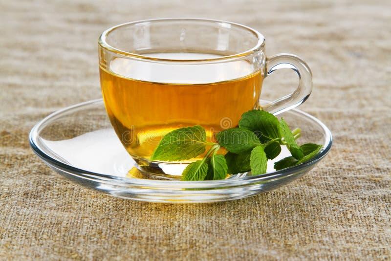Cuvette de thé avec les lames en bon état fraîches image libre de droits