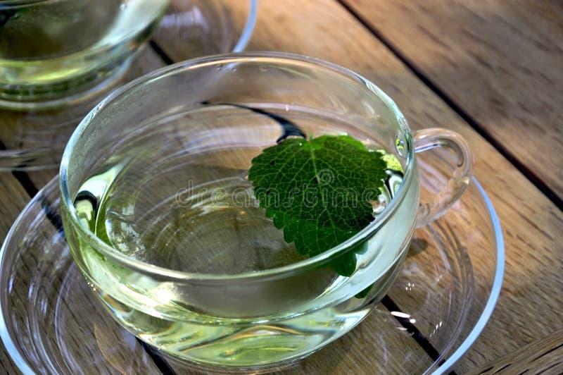 Cuvette de thé de baume de citron images libres de droits