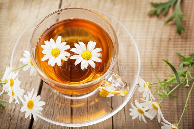 Cuvette de thé de fines herbes avec des fleurs de camomille photographie stock