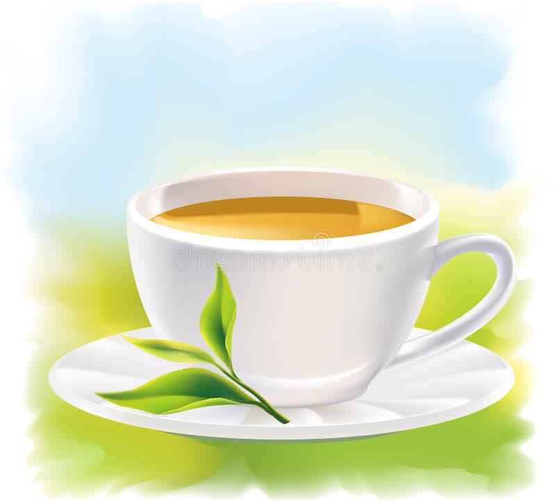 Cuvette de thé et d'une lame verte normale. Landsca ensoleillé illustration stock