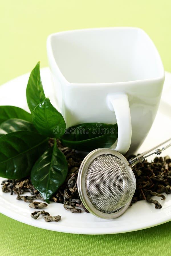 Cuvette de thé vert photo libre de droits