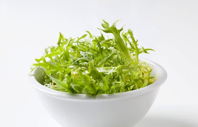 Cuvette de verts de salade images stock