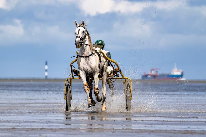 Cuxhaven, Deutschland - 22. Juli 2018: Reiter am Pferderennen im Schlickwatt bei Duhner Wattrennen lizenzfreie stockfotos