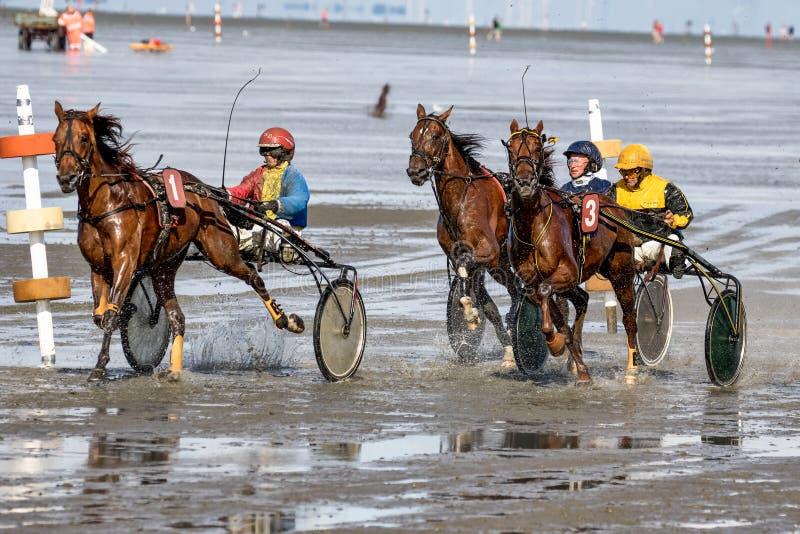 Cuxhaven, Deutschland - 22. Juli 2018: Reiter am Pferderennen im Schlickwatt bei Duhner Wattrennen stockfoto