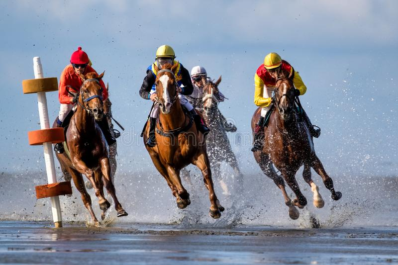 Cuxhaven, Germany - July 22, 2018: equestrian at the horse race in the mud flat at Duhner Wattrennen stock image
