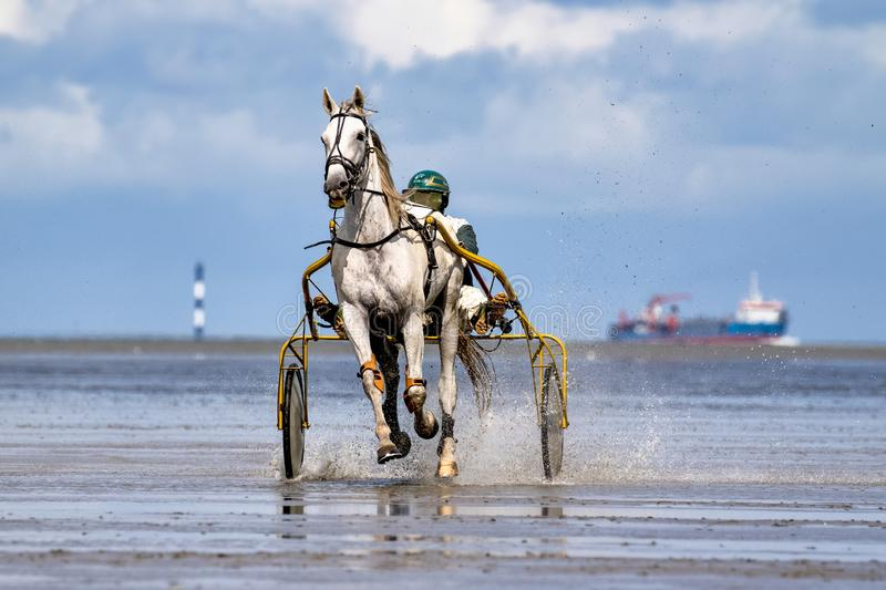 Cuxhaven, Germany - July 22, 2018: equestrian at the horse race in the mud flat at Duhner Wattrennen royalty free stock photos