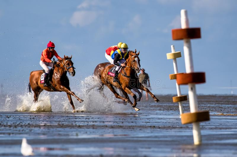Cuxhaven, Germany - July 22, 2018: equestrian at the horse race in the mud flat at Duhner Wattrennen royalty free stock image