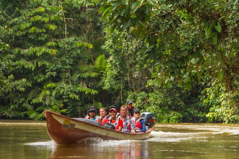 Cuyabeno przyrody rezerwa, Sucumbios prowincja, Ekwador, Luty zdjęcie royalty free