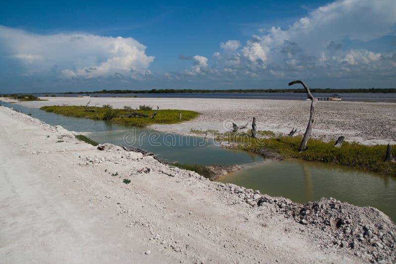 cuyo el yucatan стоковая фотография