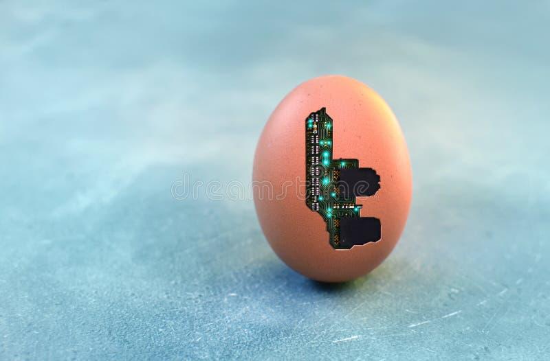 Cybernetisch organisme concept met halfgeleider-microchip in de eierschaal Kopieerruimte royalty-vrije stock foto