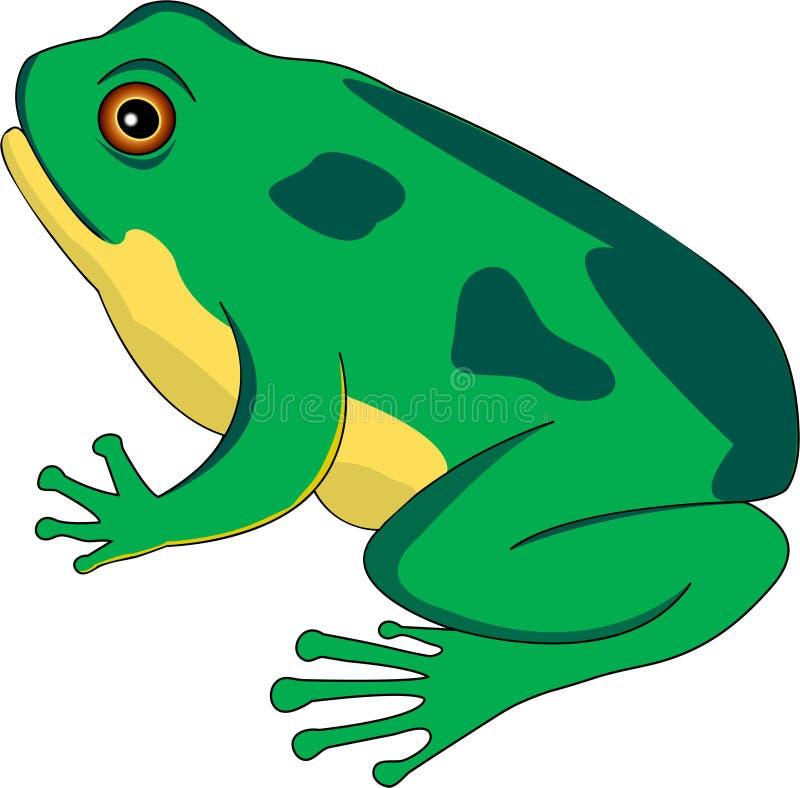 Cycle de vie 2 de grenouille illustration stock