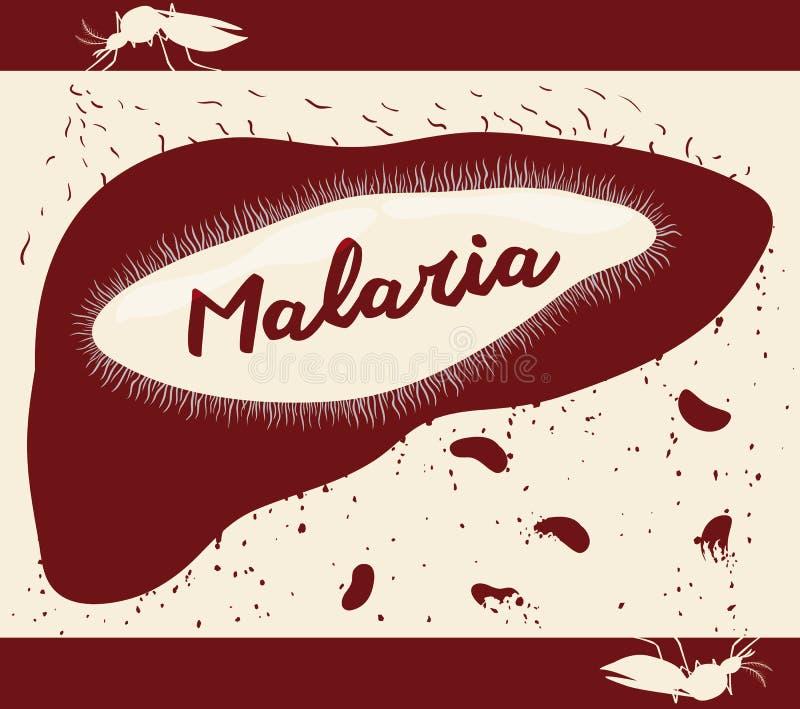 Cycle de vie de Plasmodium malarique au corps humain, illustration de vecteur illustration de vecteur