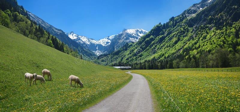 Cycle et itin?raire de hausse par la vall?e idyllique de trettach, pr?s de la station thermale Oberstdorf Paysage d'Allgau au pri images stock