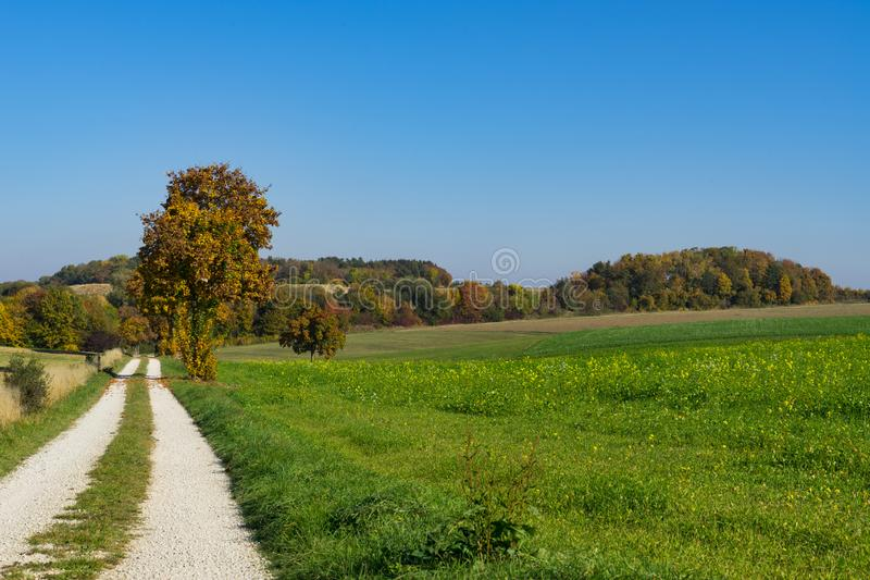 Cycle path and trees in autumn colors long Romantic Road, Germany 2. Cycle and hiking path with pebbles, trees in autumn colors along touristic route called stock image