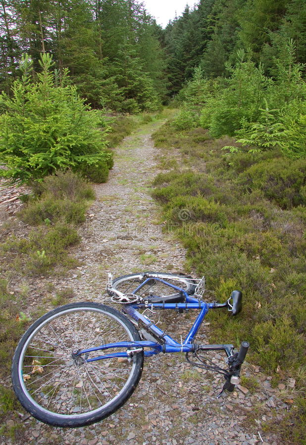 Download Cycle trail stock photo. Image of route, country, mountain - 20020300