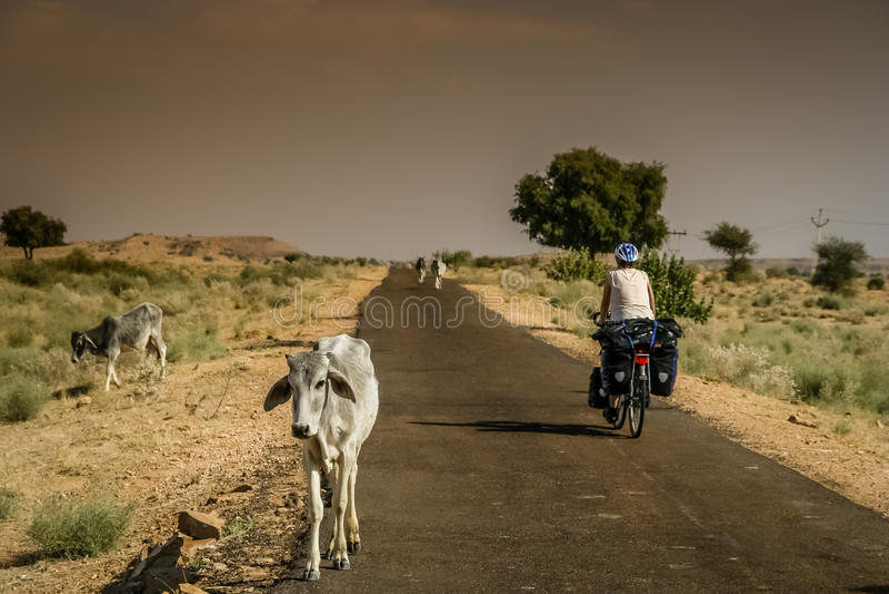Cycle voyageant en Inde photo libre de droits