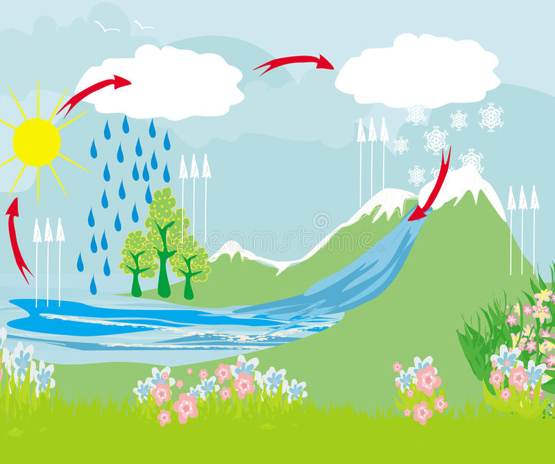 Download Cycle Water In Nature Environment Stock Vector - Illustration: 38568455