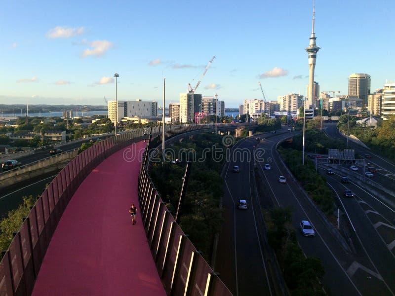 Cycleway rose lumineux à Auckland Nouvelle-Zélande image libre de droits
