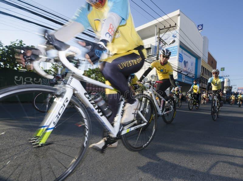Cyclicts på cykeln för farsa royaltyfria foton