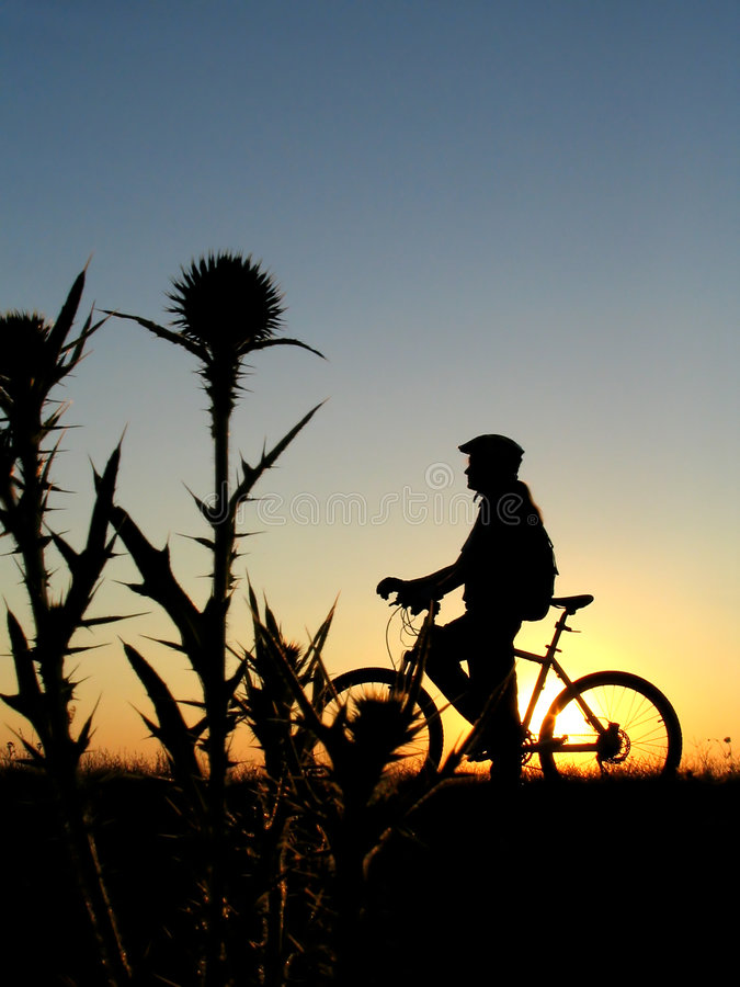 Download Cycling stock photo. Image of race, bicycle, bike, ride - 1079512