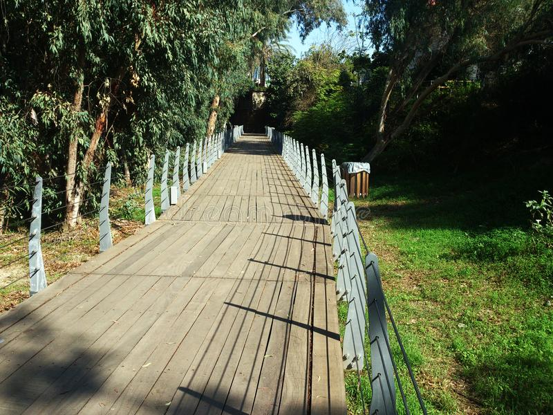 Cycling as well as walking is possible in the Linear Park called Grammiko Parko IN Nicosia in Cyprus. Cyclists are Cycling an other organised groups are having stock photo