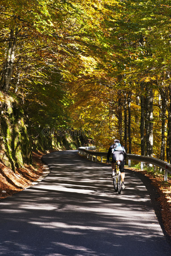 Download Cycling In A Beautiful Road Royalty Free Stock Photography - Image: 27387197