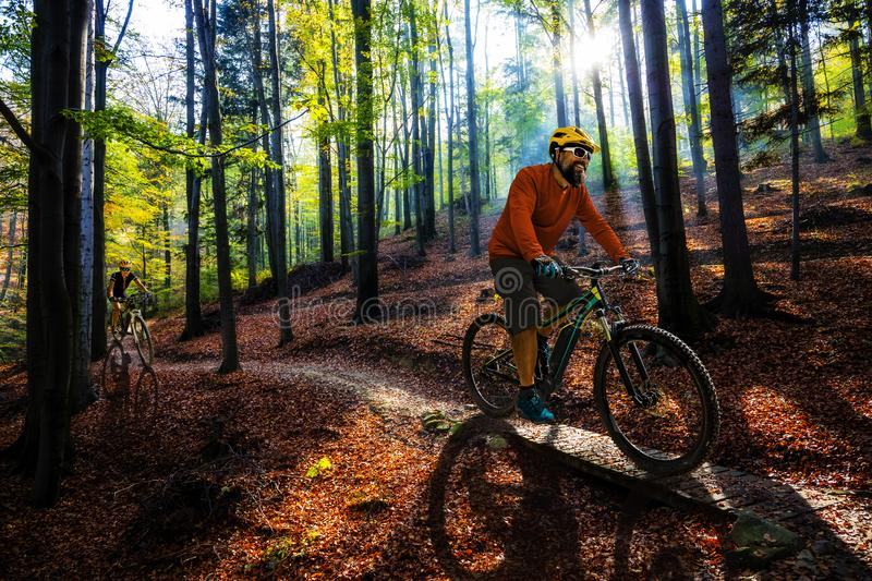 Cycling man riding on bike at sunset. royalty free stock photography