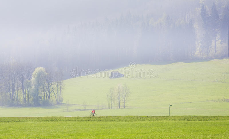 Cycling in the misty morning stock photo