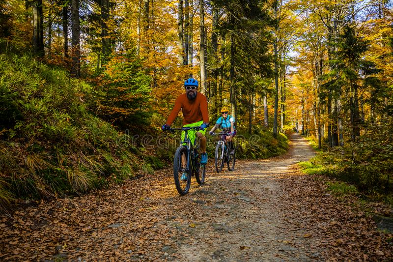 Cycling, mountain biker couple on cycle trail in autumn forest. Mountain biking in autumn landscape forest. Man and woman cycling stock photos