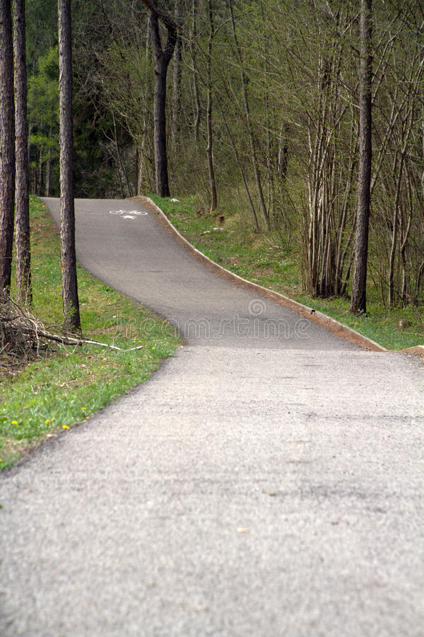 Download Cycling path on the woods stock image. Image of cycle - 24337355